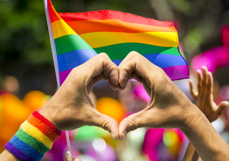 LGBTQIA+ 2 capa.jpg