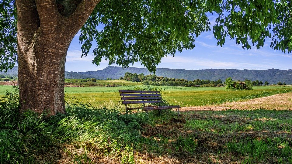 Zona rural.jpg