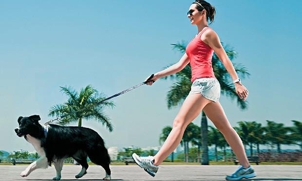 fitness-exercicios-cachorro-emagrece-74030.jpg