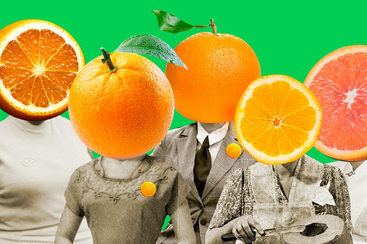 candidatas-laranjas-3-1537389353.jpg